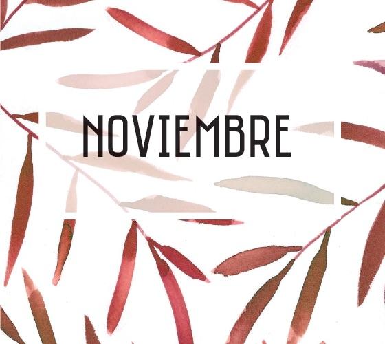 POLO NOTICIAS DE ANTIOQUIA-NOVIEMBRE DE 2018